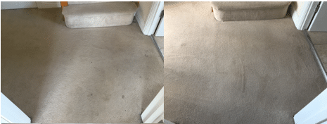 Carpet Cleaning - Before and After